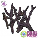 Real Reef Rock Branched 4th Generation 1Kg