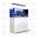 Red Sea Reefer Peninsula P500 Deluxe  Komplettsystem - Weiss (incl. 2 X RL 160 & Pendant)