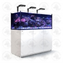 Red Sea Reefer Aquarium XXL625 Deluxe - Weiss