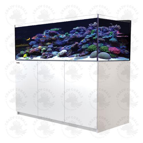 Crazy Corals Ch Red Sea Reefer Aquarium Xl 525 Weiss