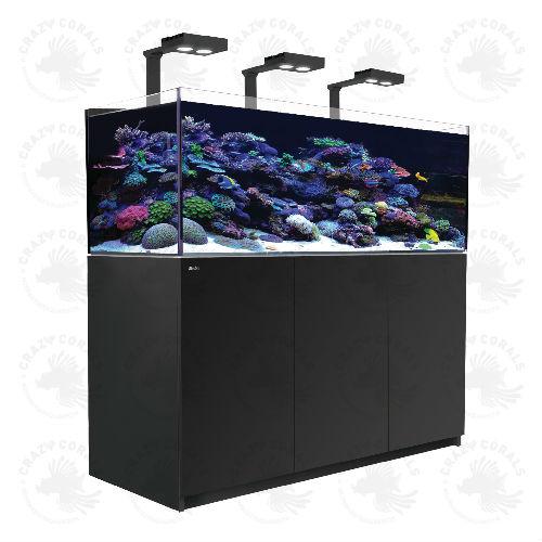 Hervorragend crazy-corals.ch - Red Sea REEFER Aquarium 525XL Deluxe Schwarz FN94